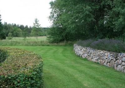 Haveanlæg med stendige og bøgehæk samt beplantning med lavendel